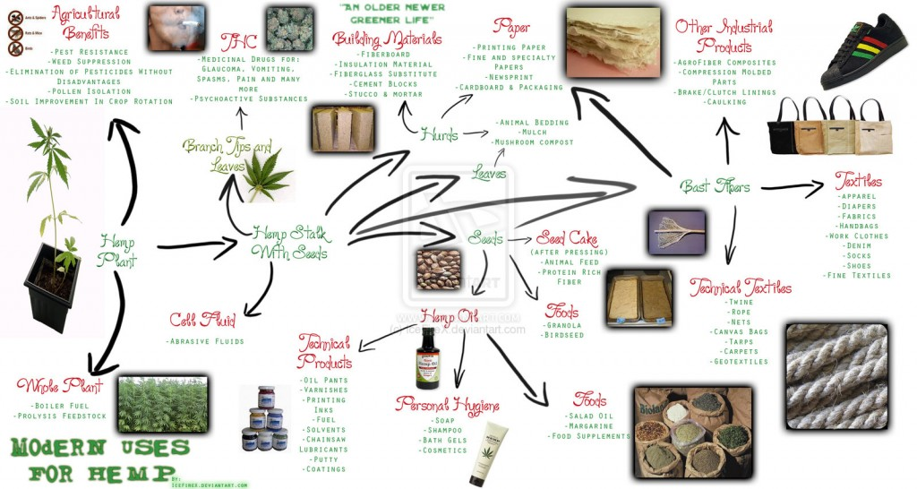Modern uses for hemp